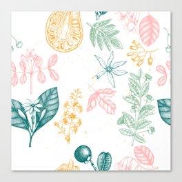 Tropical Botanics Canvas Print