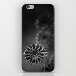 432 Hz iPhone Skin