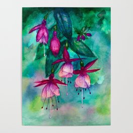 Watercolor fuschia flowers whimsical painting Poster
