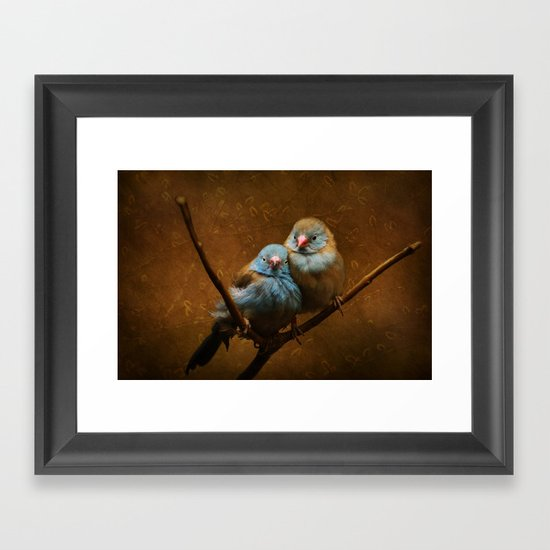 Male and Female Cordon Bleu Canaries Framed Art Print
