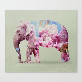 Cherry blossom Elephant Canvas Print