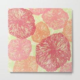 Birdseye Seedheads (pink/green) Metal Print