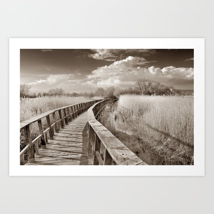Lake bridge. Vintage. Art Print