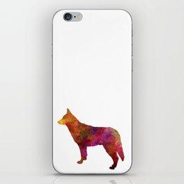Saarloos Wolfdog in watercolor iPhone Skin