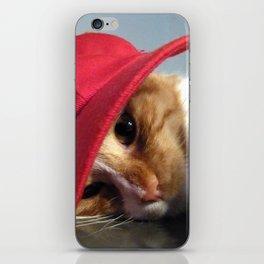 Cute Cat Wearing Red Cap iPhone Skin