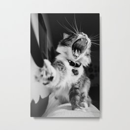 Cat Sofia Metal Print