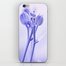 Lasting Affection iPhone & iPod Skin