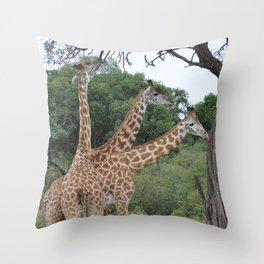 3 giraffes Throw Pillow
