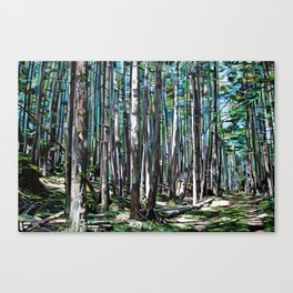 Galiano Forest Pah Canvas Print