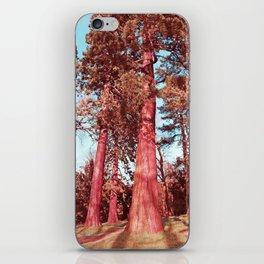 The Giants iPhone Skin