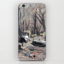 Aussie Bush iPhone Skin