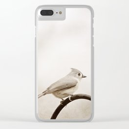 Tufted Titmouse Bird Photography, Neutral Birds Nature Photograph Clear iPhone Case