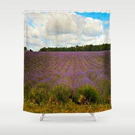 Cotswold Lavender Shower Curtain
