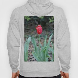 Simple Beauty Hoody
