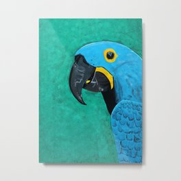 Hyacinth Macaw Gouache Painting Metal Print