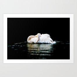 Feather Pillow Art Print