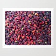 Berries in Paloquemao - Bayas en Paloquemao Art Print