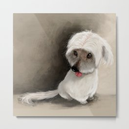 Benny the Male Model Metal Print