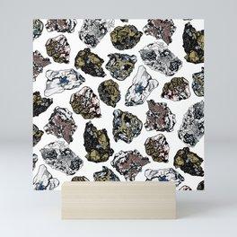 Rock collection Mini Art Print
