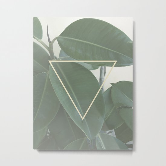 ficus nature Metal Print