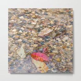 Red Leaf Stuck Among Watery Rocks Metal Print