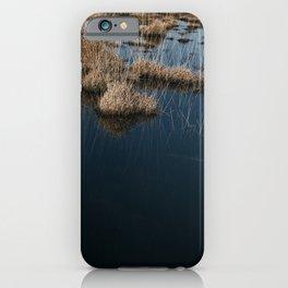Kalmthoutse Heide | Tall grasses in clear blue water iPhone Case