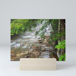 Creek Photography Mini Art Print