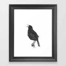 Tordo - Blackbird Framed Art Print