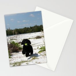 The pup  Stationery Cards