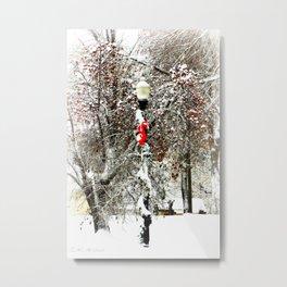 Snow Berries Metal Print
