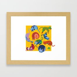 Cats and a Mouse sleeping in the Sun Framed Art Print
