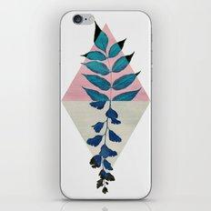 Geometry and Nature I iPhone & iPod Skin