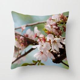 Bloom Bloom Bloom Throw Pillow