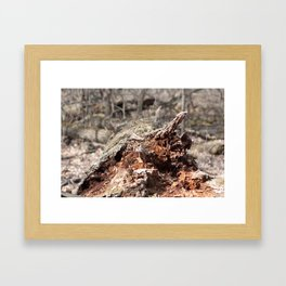 Distraught Earth - Bark Framed Art Print