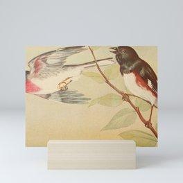 Vintage Print - Rose-Breasted Grosbeak & Towhee Mini Art Print