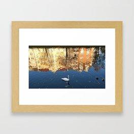 Reflector Swan III Framed Art Print