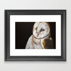 Nighty Owl Framed Art Print