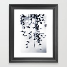 Berries in Black and White Framed Art Print