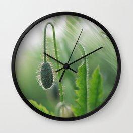 Poppy Art Nature Wall Clock