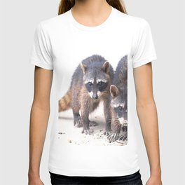 Cute wild Racoons in Costa Rica T-shirt