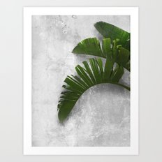 Banana Leaves on Wall Art Print