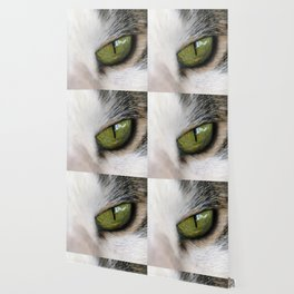 The Eye of the Domesticated Tyger Wallpaper
