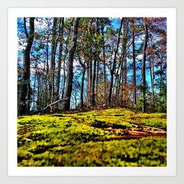 Across The Moss Art Print
