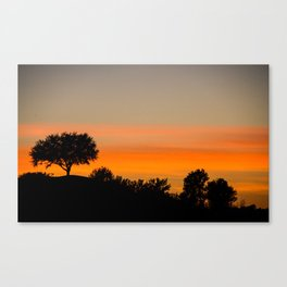 Shadow Sunset Canvas Print