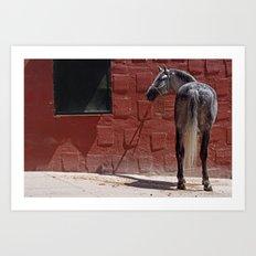 CABALLO ANDALUZ Art Print