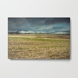 Winter's First Glance Metal Print