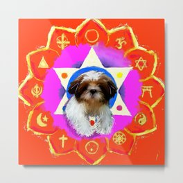 The good of all religions Metal Print