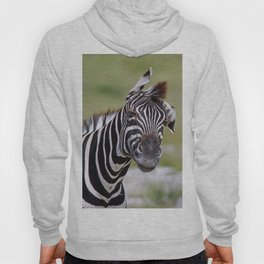 Shaking Zebra, Africa wildlife Hoody