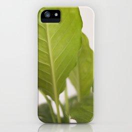 Hojas verdes (2) (green leafs) iPhone Case