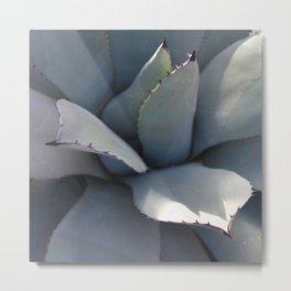 Calm Cacti Metal Print